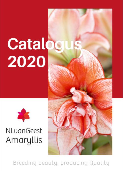 Amaryllis catalogus